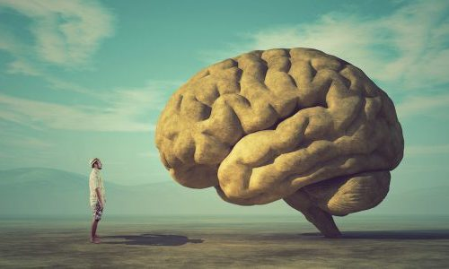 Breathwork Science psychology theory